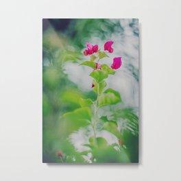 Simplicity of Growth Pt.1 Metal Print