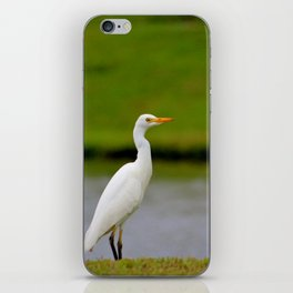 Standing Along The Edge iPhone Skin