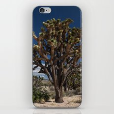 Joshua Trees in Mojave Desert iPhone & iPod Skin