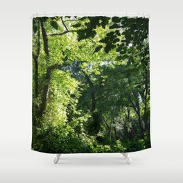 Forest Light and Shade Shower Curtain