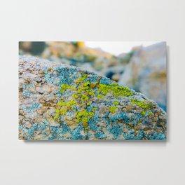 Hyper Lichen on Warm Desert Rock Metal Print
