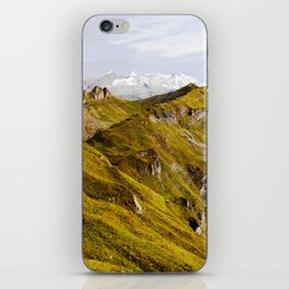 Alpine iPhone Skin