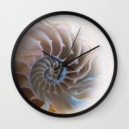 Natural spiral Wall Clock