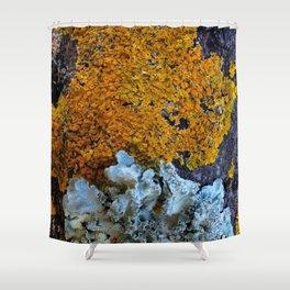 Tree Bark Pattern 6 With Orange And Blue Lichen Shower Curtain