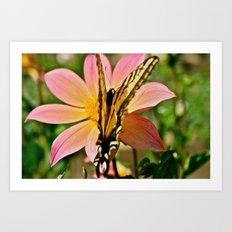 Dahlia v. Butterfly Art Print