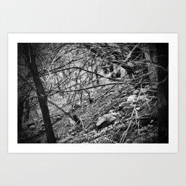 deer trails Art Print