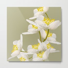 White Flowers On A Light Green Background #decor #buyart #society6 Metal Print