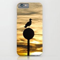 Birds in the sunset iPhone 6s Slim Case