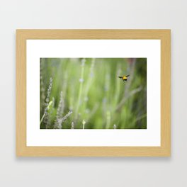 Imposible flight Framed Art Print