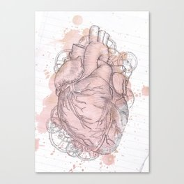 Anatomical Heart Canvas Print