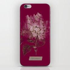 HYDRANGEA 2 iPhone & iPod Skin