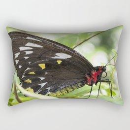 Butterfly Birdwing Rectangular Pillow