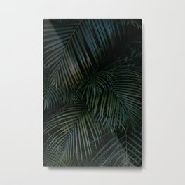 Palm leaves - Tropical  Metal Print