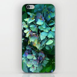 Treasure of Nature VII iPhone Skin