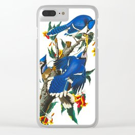 Blue Jay Clear iPhone Case