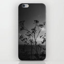 Big Sur Wild Flowers IV iPhone Skin