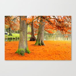 Amsterdam in the Fall pt 3 Canvas Print