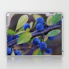 Blue fruits Laptop & iPad Skin