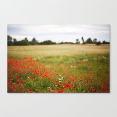 Poppy field. Canvas Print
