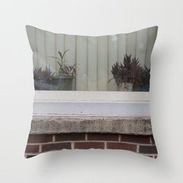 Plants in window Throw Pillow