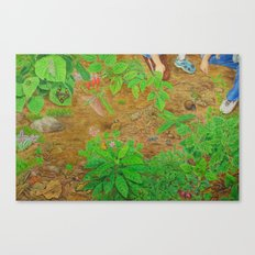 A Day of Forest (6). (close look) Canvas Print