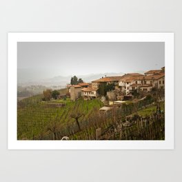 vineyard in veneto Art Print