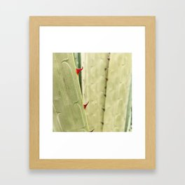 Curves & Lines by Mother Nature Framed Art Print