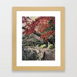 Inokashira Park in the Fall, Tokyo, Japan Framed Art Print