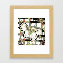 #2 PURPLE-WHITE MOTHS  ON BLACKTHORN LATTICE BRANCHES ART Framed Art Print