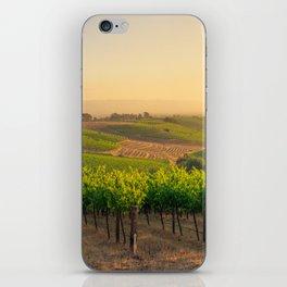 Golden Vineyard  panorama iPhone Skin