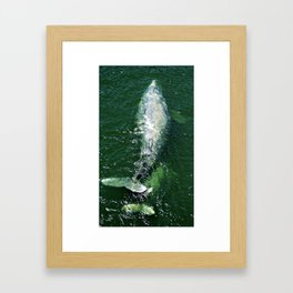 Klamath Framed Art Print