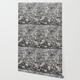 Undecisive Wallpaper