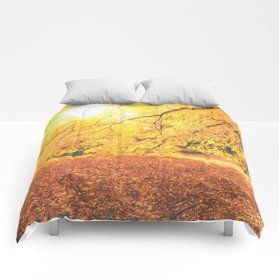 New York City Autumn Sun Comforters
