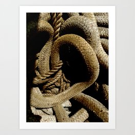 All Tied Up In Knots Art Print