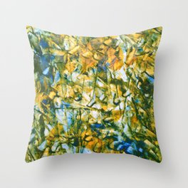 Which Is Throw Pillow