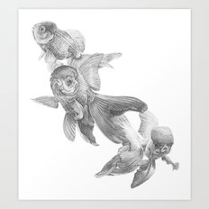 Fancy Fish Art Print
