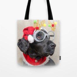 Festive fun Tote Bag