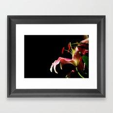 lone lily Framed Art Print