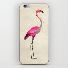 Pink Flamingo iPhone & iPod Skin
