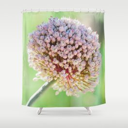 Fennel Bulb Shower Curtain