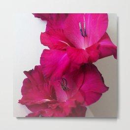 Vibrant Petals Metal Print