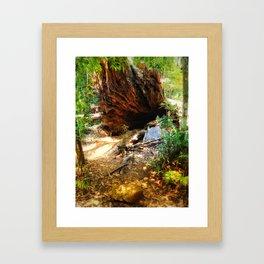 To wonderland Framed Art Print