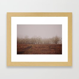 Foggy Trail to the Trees Framed Art Print