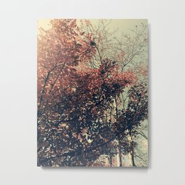 The Trees - The Enchanted Forest in Fall Metal Print