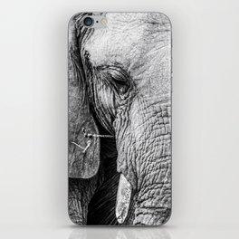 Elephant Wrinkles iPhone Skin