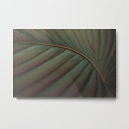 green plant / friendly bacteria Metal Print