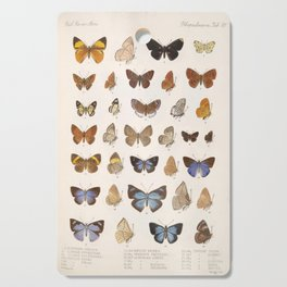 Vintage Scientific Insect Butterfly Moth Biological Hand Drawn Species Art Illustration Cutting Board