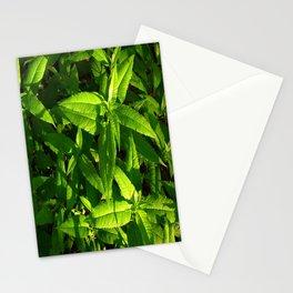 Plants a Plenty Stationery Cards