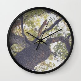 147 | austin Wall Clock