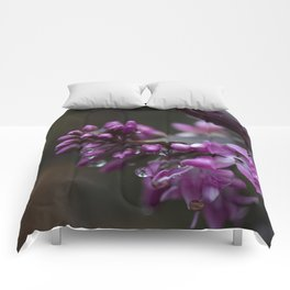 Soul Cleanse Comforters
